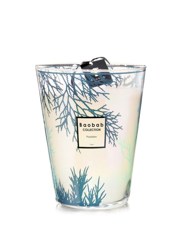 baobab collection poseidon coral candle