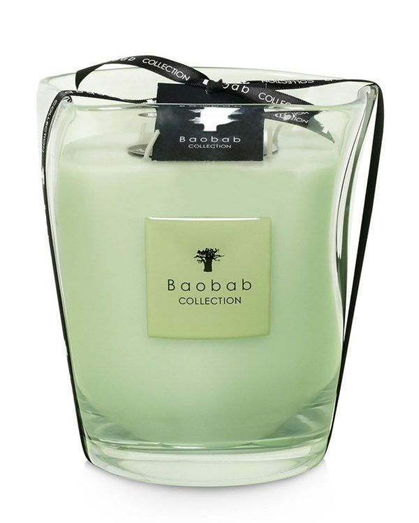 baobab modernista vidre poetry max16 candle